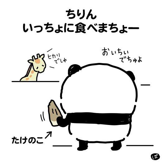 【パンダのみみみ】さん