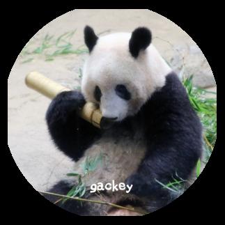 xiang xiang Diary オリジナル グッズラインナップ
